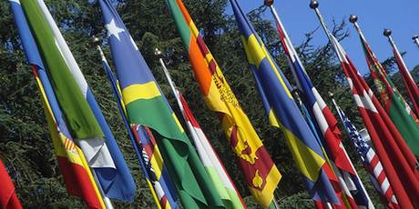 Avenue of Flags at the UN Building by Erin Faulkner